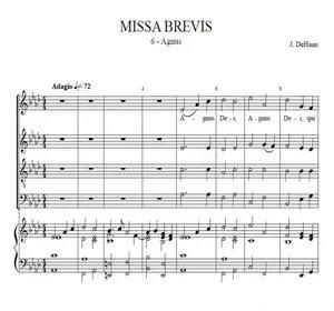 Agnus Dei from Missa Brebis - Jacob de Haan, for choir and concert band or organ
